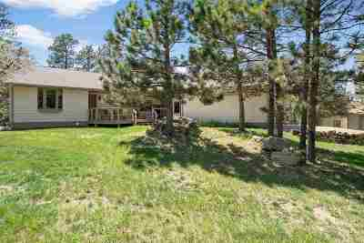 Sturgis SD Single Family Home For Sale: $425,000