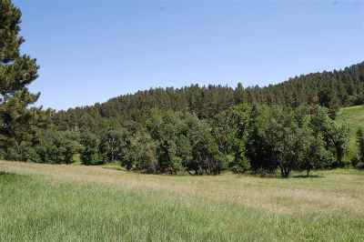Residential Lots & Land For Sale: 12331 Antler