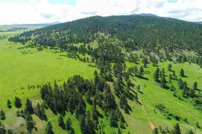 Spearfish SD Residential Lots & Land For Sale: $668,800