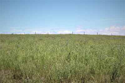 Belle Fourche Residential Lots & Land For Sale: Lot 2 Snoma Estates