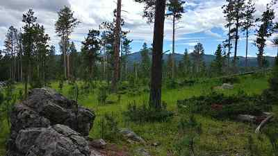 Deadwood Residential Lots & Land For Sale: Bergen
