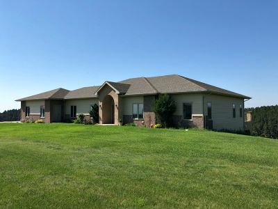 Pennington County Single Family Home Uc-Contingency-Take Bkups: 13881 Evans