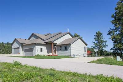 Lead SD Single Family Home For Sale: $280,000