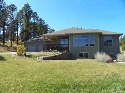 Sturgis Single Family Home Under Contract-Dont Show: 12138 Washington