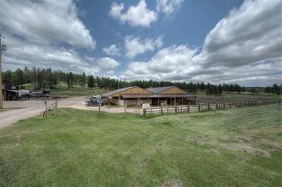 Custer SD Single Family Home For Sale: $995,000
