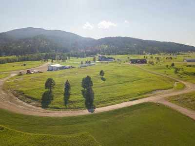 Sturgis Residential Lots & Land For Sale: 12963 Lewton