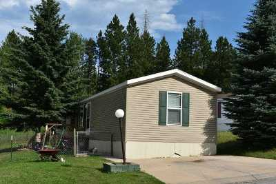 Deadwood Single Family Home Uc-Contingency-Take Bkups: 32 Mile High Drive
