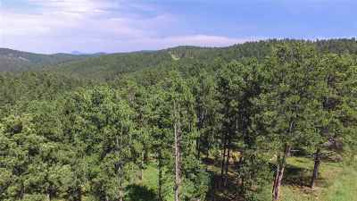 Deadwood Residential Lots & Land For Sale: Lot 16 Larkspur