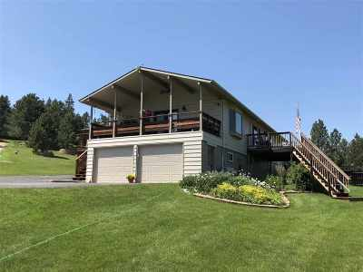 Sturgis Single Family Home For Sale: 12310 Viking Drive