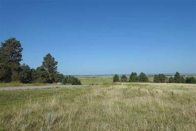 Belle Fourche Residential Lots & Land For Sale: Hat Ranch