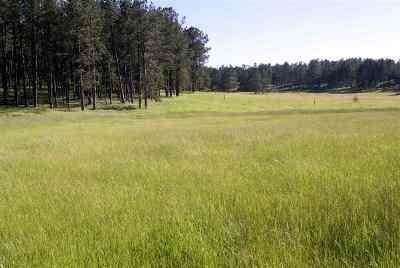 Custer SD Residential Lots & Land For Sale: $80,000