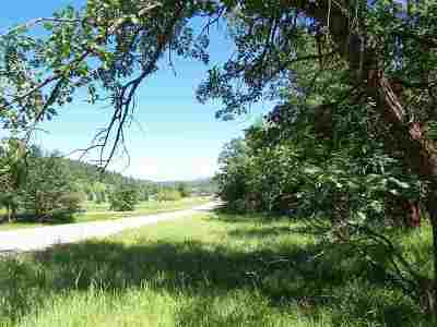 Deadwood, Lead Residential Lots & Land For Sale: Ranch