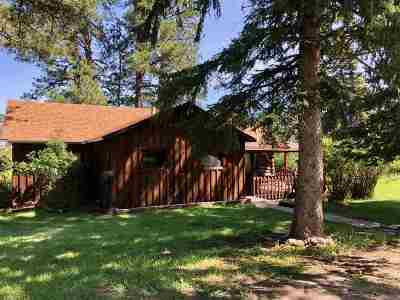 Hill City Single Family Home Financing Contingency: 12496 Old Hill City