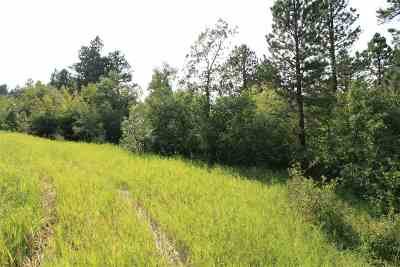 Spearfish Residential Lots & Land For Sale: Tract 30a Pasque Loop