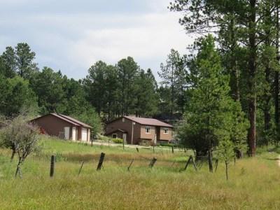 Custer Single Family Home For Sale: 12292 Aspen Lane