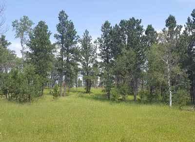 Deadwood, Lead Residential Lots & Land For Sale: Tbd S Rapid Creek Road