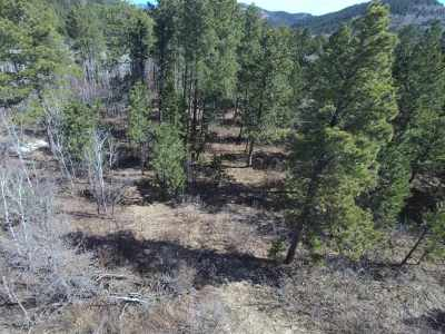 Deadwood Residential Lots & Land For Sale: Tetro Rock