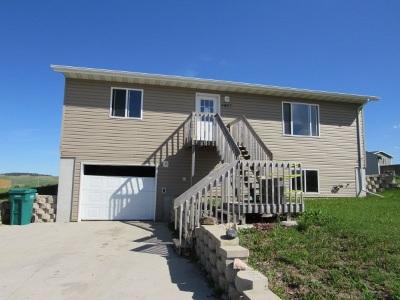 Black Hawk Single Family Home For Sale: 4823 Glacier Ct