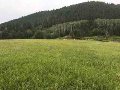 Deadwood Residential Lots & Land For Sale: Lot 2a Elk View