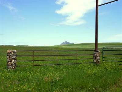 Sturgis Farm & Ranch For Sale: 207th St