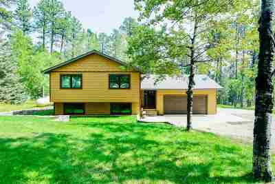 Deadwood, Deadwood/central City, Lead Single Family Home For Sale: 21442 Whitetail