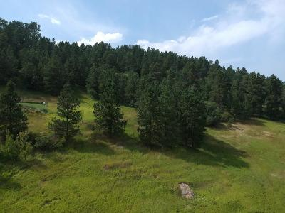 Whitewood Residential Lots & Land For Sale: Hooker