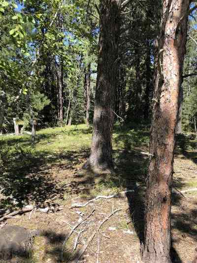 Deadwood Residential Lots & Land Uc-Contingency-Take Bkups: Lot 5 Crested