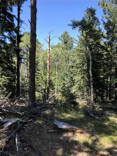 Deadwood Residential Lots & Land Uc-Contingency-Take Bkups: Lot 8 Crested