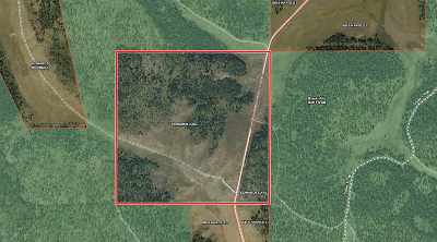 Residential Lots & Land For Sale: Boles Canyon