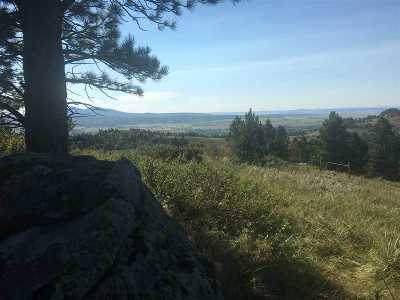 Spearfish SD Residential Lots & Land For Sale: $350,000