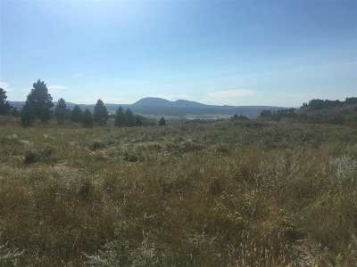 Spearfish SD Residential Lots & Land For Sale: $295,000