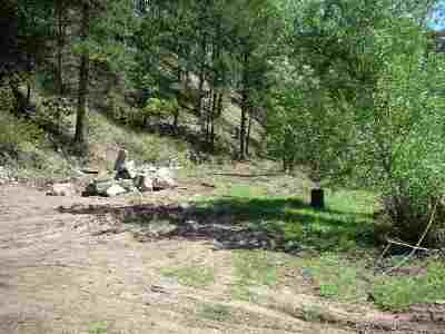 Deadwood, Lead Residential Lots & Land For Sale: 11396 Nevada Gulch Road