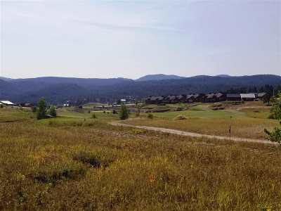 Sturgis Residential Lots & Land For Sale: 20690 Wildberger Road