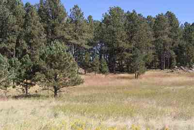 Custer SD Residential Lots & Land For Sale: $79,000