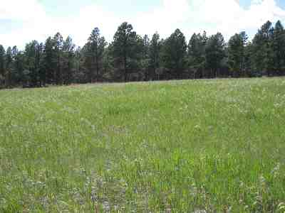 Custer County Residential Lots & Land For Sale: Tract 9 Lone Elk I