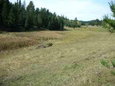 Deadwood Residential Lots & Land For Sale: 11860 Roubaix Lake Road