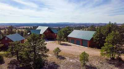 Custer Single Family Home For Sale: 11431 Wrangler