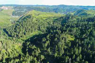 Deadwood Residential Lots & Land For Sale: Mineral 1399 Through 1563 M.s. 1519 In King Lear & Tempest