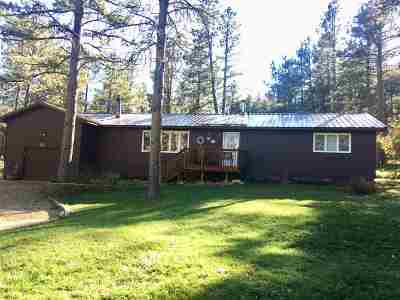 Sturgis Single Family Home For Sale: 20787 Starlight