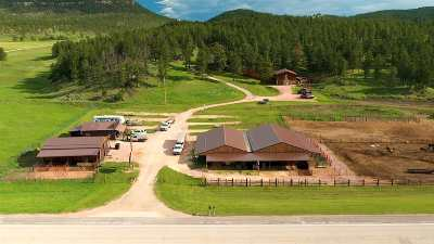 Custer Single Family Home For Sale: 11596 Us Highway 16