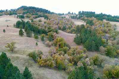 Whitewood Residential Lots & Land For Sale: Corner Of Frontier And Antler