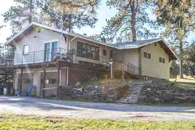Deadwood Single Family Home For Sale: 11863 Nemo Road