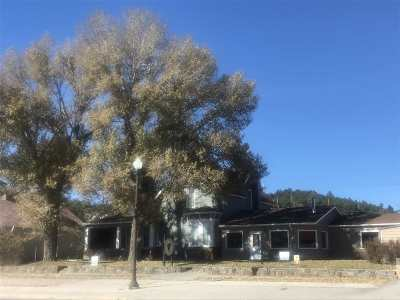 Custer Single Family Home For Sale: 325 Mount Rushmore