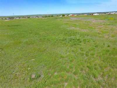 Belle Fourche Commercial For Sale: Chamber