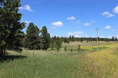 Residential Lots & Land For Sale: Track 13 Us Hwy 89
