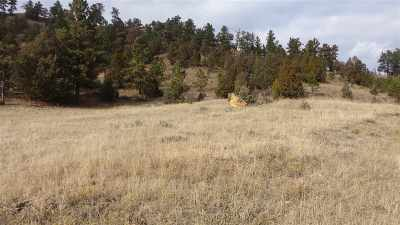 Farm & Ranch For Sale: Inyan Kara Creek Road