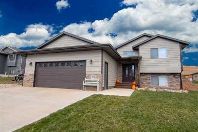 Sturgis Single Family Home For Sale: 2579 Meadows Dr