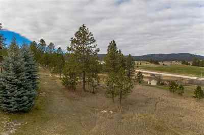 Sturgis Residential Lots & Land For Sale: 12300 Viking