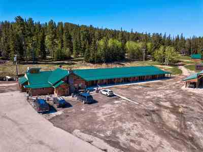 Deadwood, Lead Commercial For Sale: 11201 Us Hwy 14a