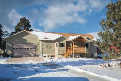 Sturgis Single Family Home For Sale: 1343 Otter